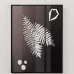 Meris Angioletti, Lunaria#2, 2017-2018, gelatin silver photograms transferred on photo paper, 45x60 cm, ed. 1+2AP. Courtesy Otto Zoo. Ph. Ugo Dalla Porta