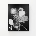OZ_Meris Angioletti, D-76, Fossil, 2017-2018, gelatin silver photograms transferred on photo paper, 45X60 cm. Courtesy Otto Zoo. Ph. Luca Vianello